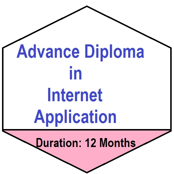 1 Year Computer Diploma (Advance Diploma in Internet Application) Training in Palwal
