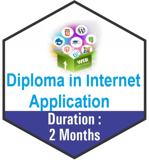 6 Months Computer Diploma (Diploma in Internet Application) Training in Palwal